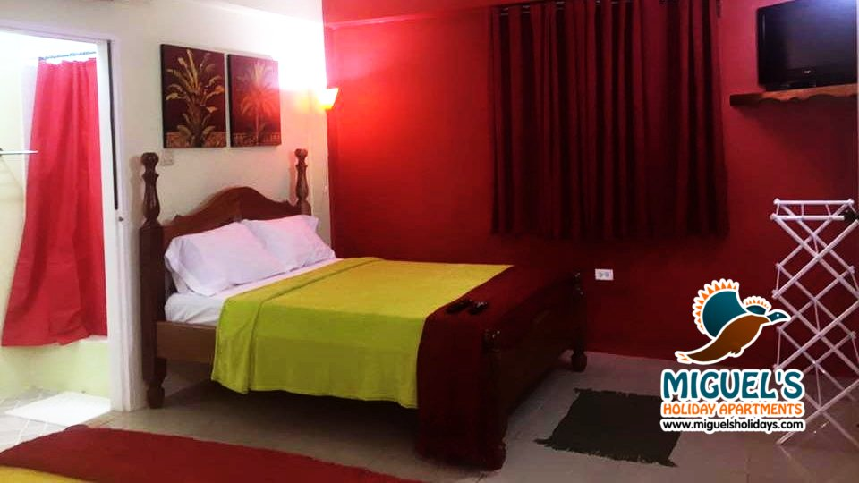scarlet-ibis-room-miguels-holiday-apartments-tobago-travel-hotel-004.jpg